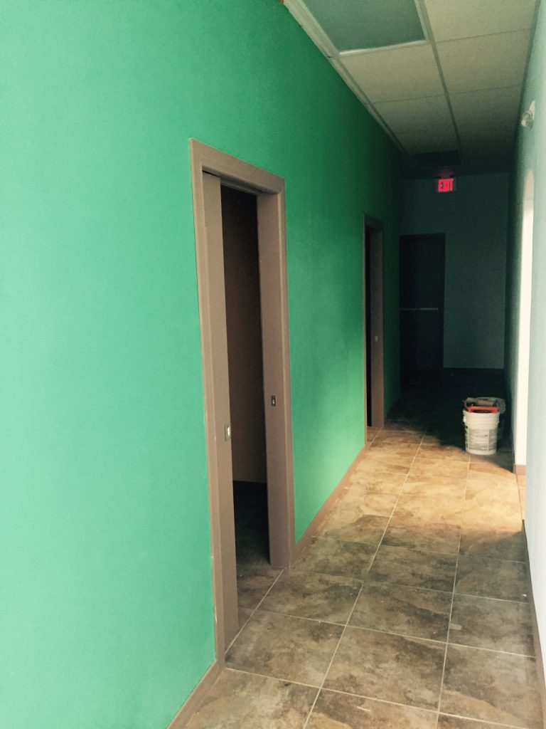 Painting and Remodeling Contractor